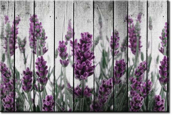 newmedia-art.pl fototapeta na ścianę z lawendą
